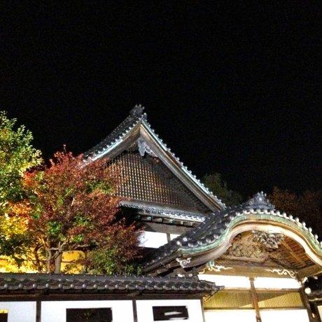 Ánh đèn đêm ở Tatemono-en