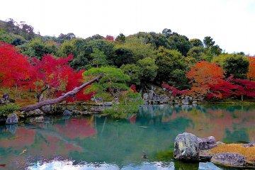 <p>Sogenchi Pond</p>