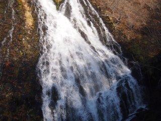 متشعب من المنتصف مع مياه متدفقة بحيوية.
