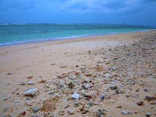 Mặt nước màu ngọc lục bảo, cát trắng và vô số vỏ sò ốc