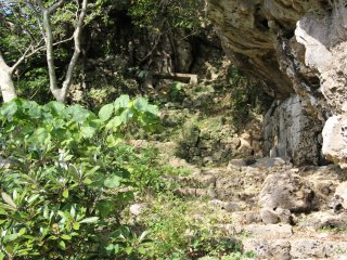 The trail to the top isn't particularly long, but most of it is surrounded by limestone rock, dense vegetation, and steep drop-offs down the hill below