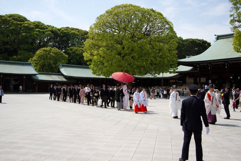 The couple with their families and guests walking across the large open space in front of Meiji Shrine's main hall