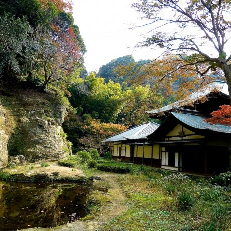 鎌倉 瑞泉寺の秋