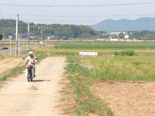 ขี่จักรยานยนต์ในมิฟุเนะ