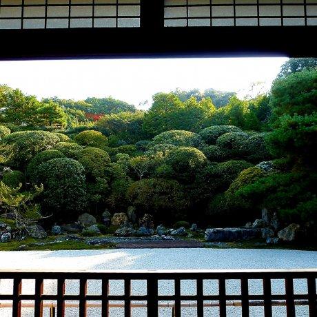 京都 金地院 鶴亀の庭