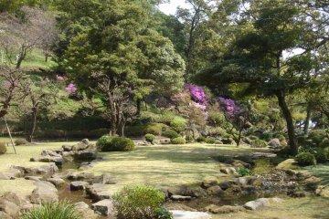 <p>รูปแบบการจัดสวน เพื่อให้จินตนาการถึงภูเขาและป่าไม้ จุดเด่นที่เซนกาเน่นอีกอย่างหนึ่งคือป่าไผ่ ต้นไผ่ที่นี่นำเข้ามาจากประเทศจีน</p>
