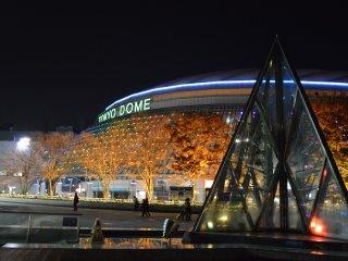Даже деревья вокруг Tokyo Dome выглядят красиво освещенными.