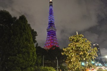<p>Back side of the Tokyo Tower with the non-orange light-up</p>