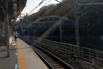 <p>The west platform. The trees lining the tracks mark the beginning of the adjacent park.&nbsp;</p>