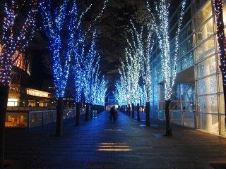 Hình ảnh của Blue Lights Symphony