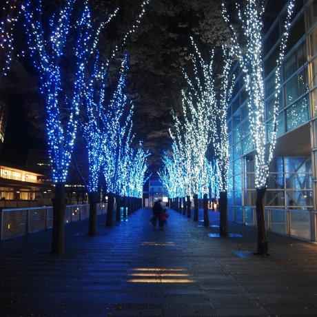 Blue Lights Symphony