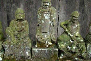 <p>佛陀有生</p>