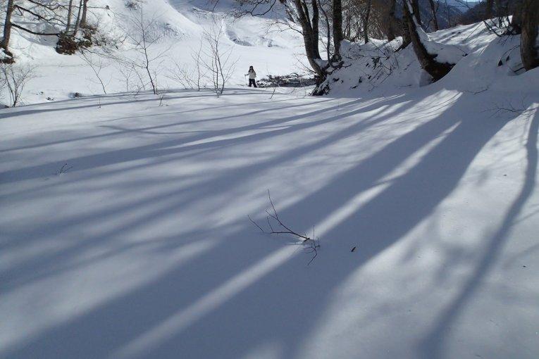 เล่นสโนว์ชูในอุทยานแห่งชาติ Joestu