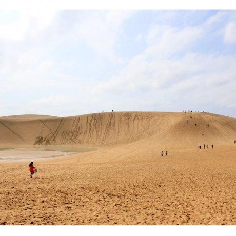 Cồn cát Tottori