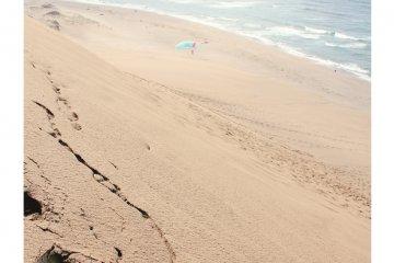 부드러운 모래에 남은 발자국