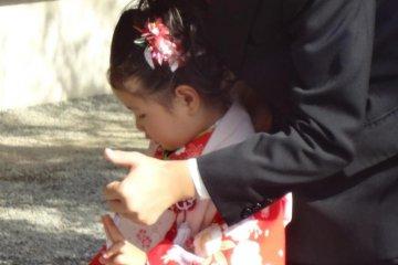 伊勢山皇大神宮是横滨市内庆祝七五三最合适和方便的神社。