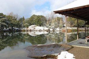 池向こうの築山奥は梅園