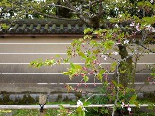 Muros cobertos de telhas formam o fundo