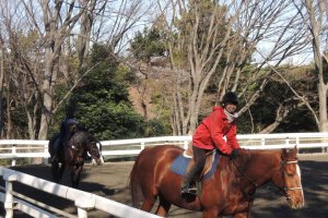 Horse riding by a club member