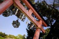 Đền Kamigamo ở Kyoto