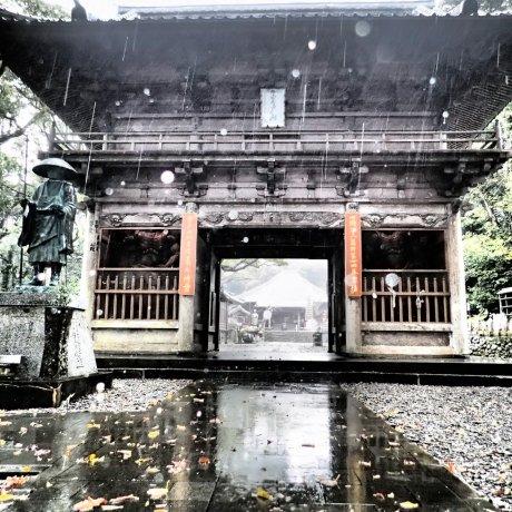 Hotsumisakiji