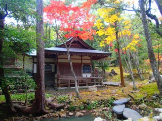 Temple grounds on fire with autumn color