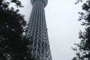 โครงสร้างของ Tokyo Skytree เป็นโครงสร้างที่สามารถควบคุมแรงสั่นสะเทือนได้ เหมือนกับโครงสร้างรูปทรงเจดีย์โบราณของญี่ปุ่น