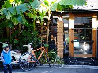 Bên ngoài quán cà phê, được bao phủ bởi các loài cây nhiệt đới.