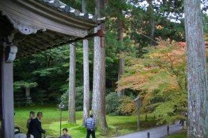 Kyoto Ohara Temple Gardens