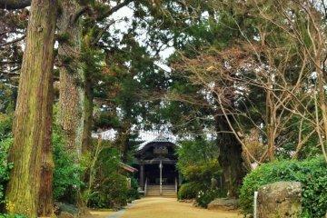 Joruri-ji Temple in Matsuyama