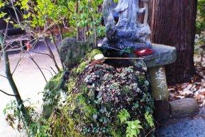 A very verdant temple