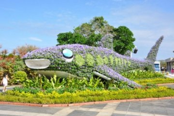 Okinawa เกาะสวรรค์ของญี่ปุ่น (3)