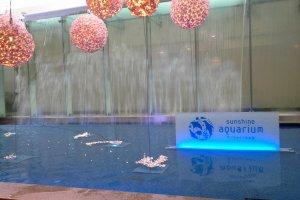 ทางเข้าSunshine International Aquarium