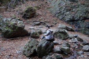 สวนหินหรือ The Rock Garden