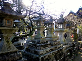 Stone lanterns stand among plum trees with buds already swelling on the branches