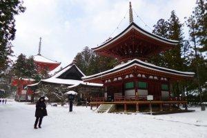 Danjo-garan มีสถาปัตยกรรมทางศาสนามากมายอยู่บริเวณนี้
