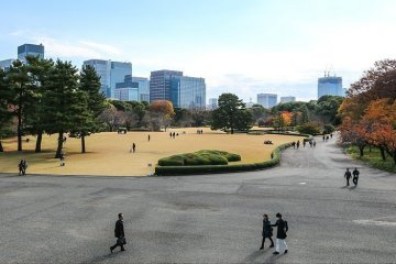 Half-day Customizable Private Tokyo Tour