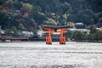 Hiroshima and Miyajima Private Tour
